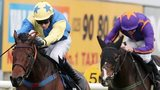 Little King Robin, ridden by Mark Walsh, holds off Arctic Fire to win at Down Royal