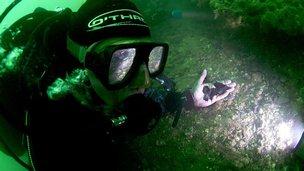 Diver recovering flint