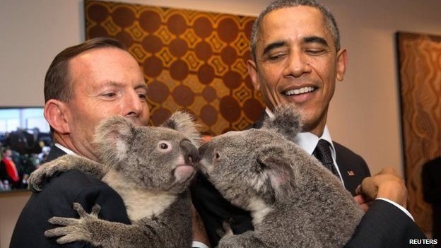 Australia's Prime Minister Tony Abbott (L) and US President Barack Obama each hold a koala at the G20 Leaders Summit in Brisbane, Australia on 15 Nov 2014