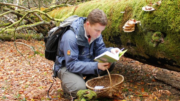 Are food foragers unfairly maligned?...