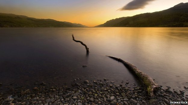 The Woodland Trust suggests fallen trees and branches are behind new Nessie sightings