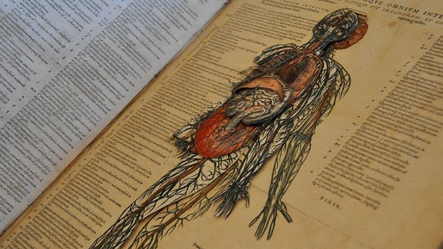 Layered manikin - in 16th Century medical book by Andreas Vesalius