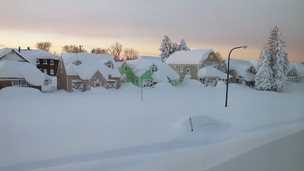 Snow covered houses in Buffalo, New York