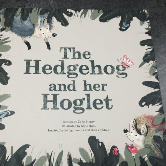 Hedgehog and her Hoglet