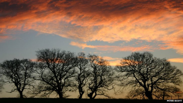 Dawn sky in Bellingham
