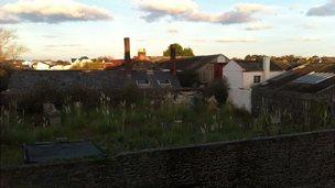 Leale's Yard