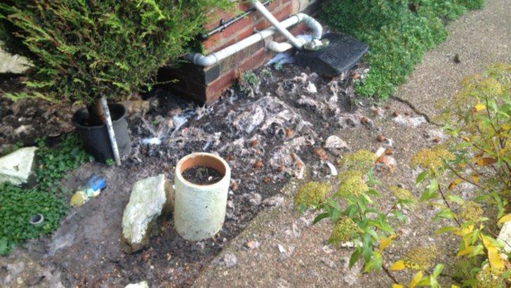 Sewage in garden