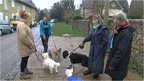 Sussex dog owners