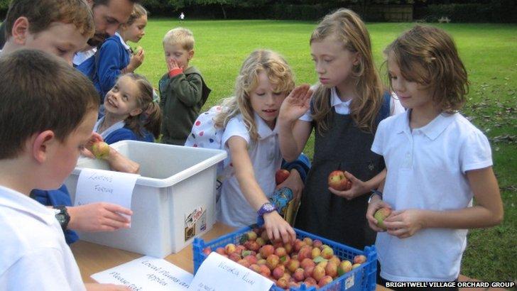 Children tasting and taking home fruit