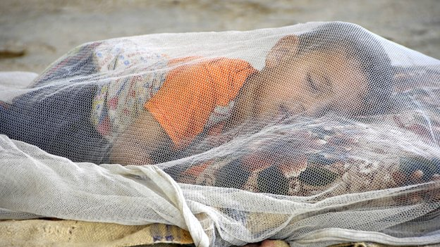 child sleeping under a bed net