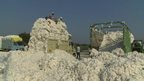 Lorries full of cotton