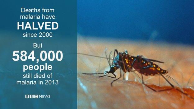 Halving of malaria deaths 'tremendous achievement'