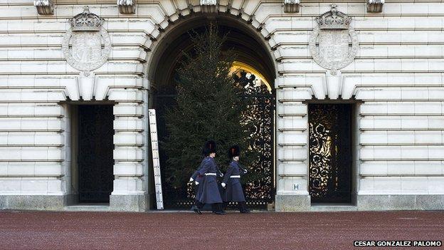 Buckingham Palace, taken by Cesar Gonzalez Palomo