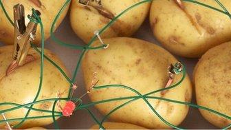 Potatoes and LED