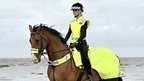 Rider and horse in high visibility clothing