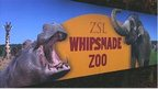 ZSL Whipsnade Zoo sign