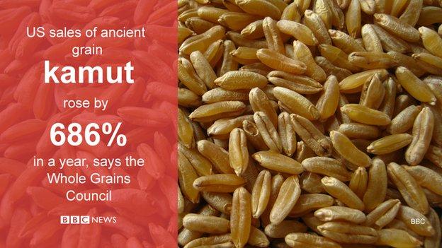 ancient US grain kamut statistic