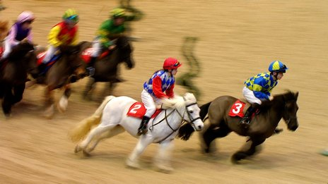 Shetland ponies race at Olympia