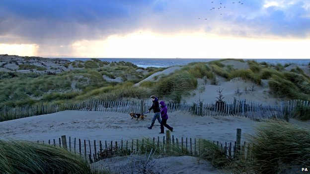 Two people walking a dog on a beach
