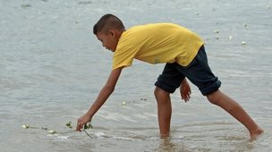 A boy lays a flower in water