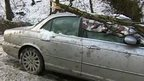 BBC reporter Phil Bodmer in front of a car with its roof crushed by a fallen tree branch