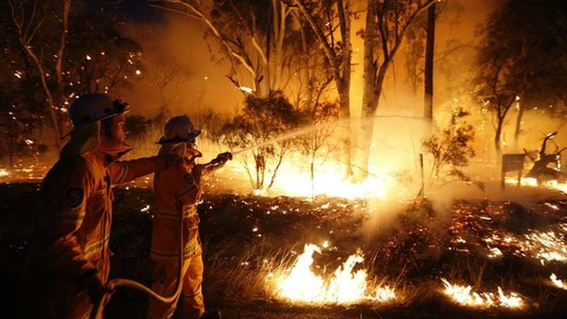 what causes bushfires and how common are they