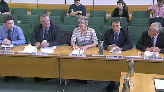 Committee witnesses