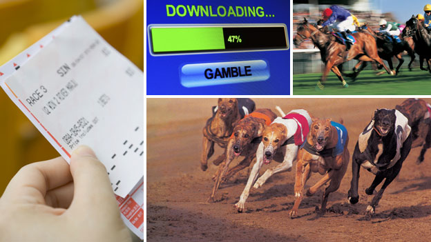 Sports gambling blogs las vegas local casino