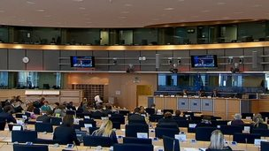 European Parliament committee