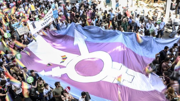 A giant transgender flag surrounded by a crowd of people