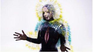 BBC News - Bjork rushes out new album Vulnicura