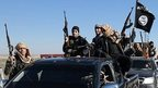 Islamic State militants (file photo)