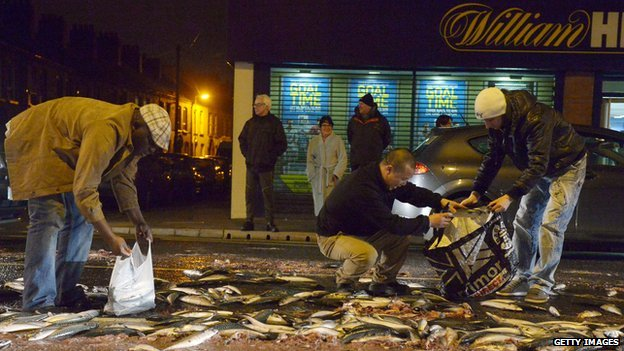 Fish spill on Ravenhill Road, east Belfast