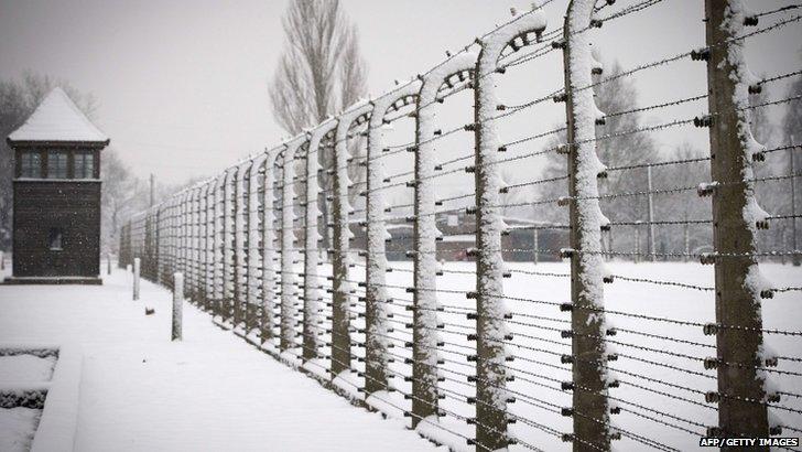 Barbed wire at Auschwitz