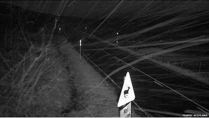 snow on A82