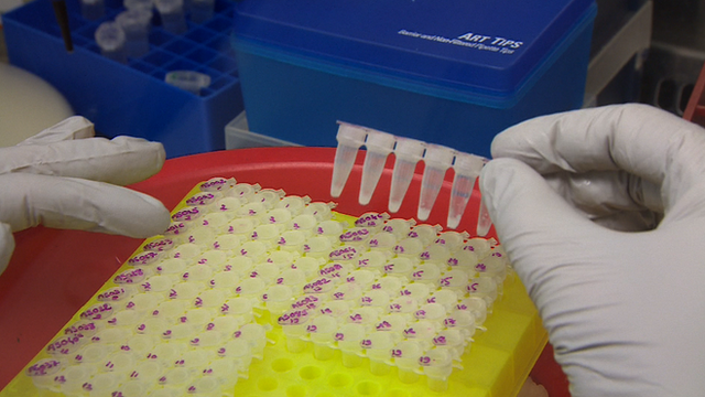 Ebola virus research