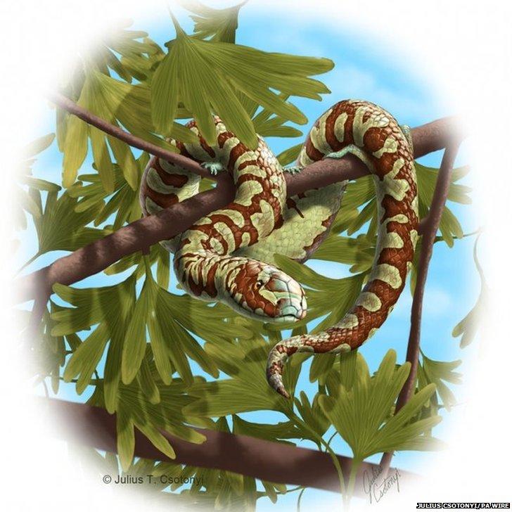 Prehistoric snake