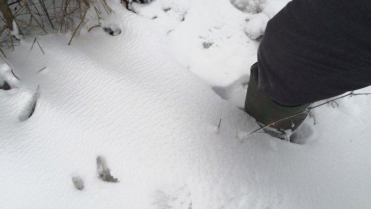 Snow in Consett