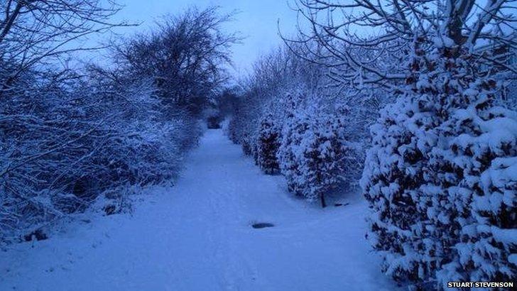 Snow laden path in Lanark