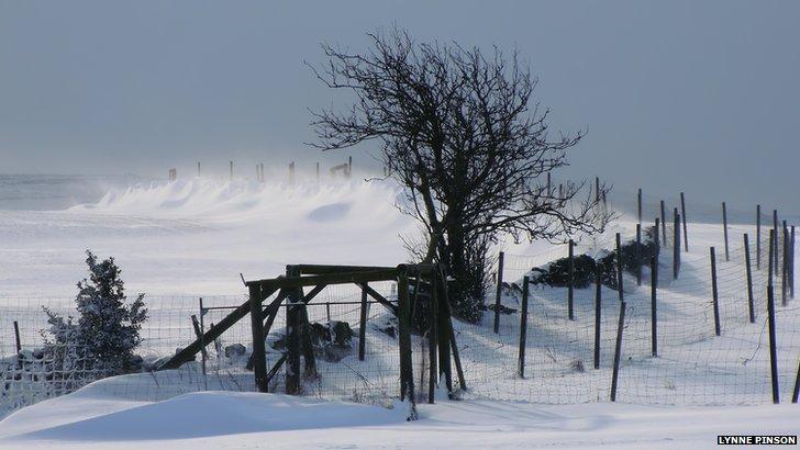Snowdrifts at Penistone