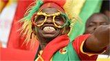 Guinea fan