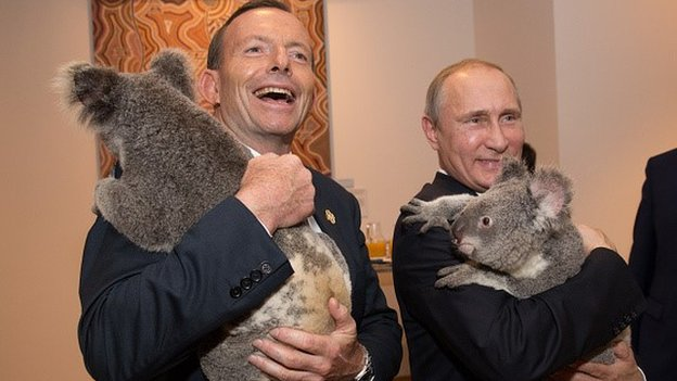 In this handout photo provided by the G20 Australia, Australia's Prime Minister Tony Abbott and Russia's President Vladimir Putin meet Jimbelung the koala before the start of the first G20 meeting on November 15, 2014 in Brisbane, Australia