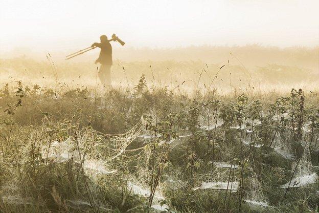 'Web Spinners and Deer Stalkers' by Duncan Herring