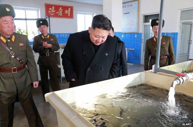 Kim Jong Un (C) visiting a catfish farm, December 2014.
