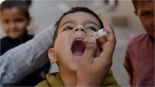 BBC News - Synthetic polio vaccine project