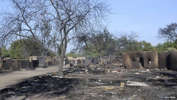 The remains of cattle in the village of Ngouboua after the first attack by Boko Haram on Chadian soil, 13 February 2015