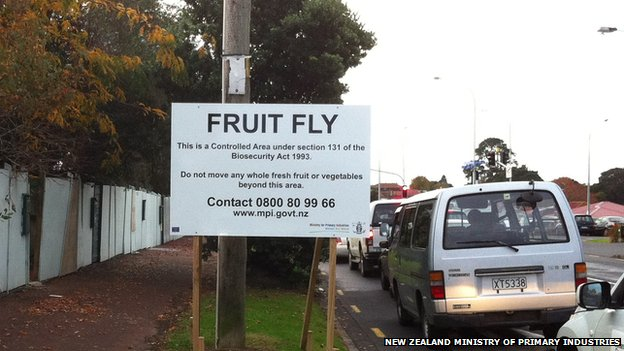 A sign warning of a fruit fly exclusion zone in New Zealand