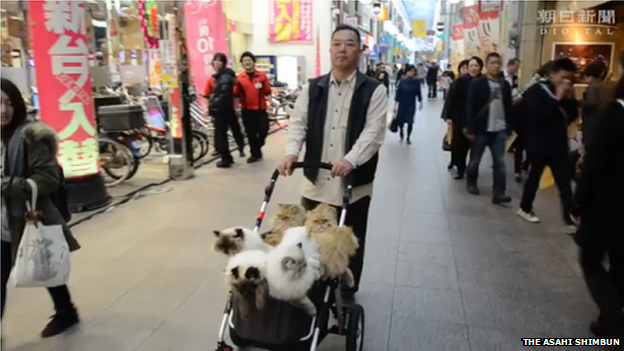 Masahiko Suga with his cats on a street