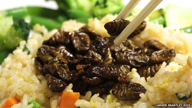 Silkworm pupae with rice