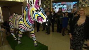 Gilbert the Zebra